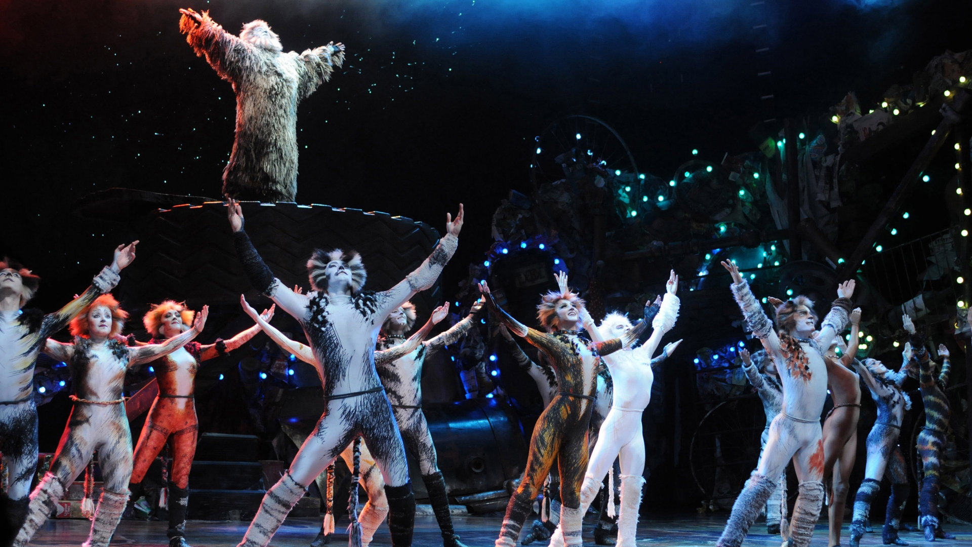 cats-review-west-end