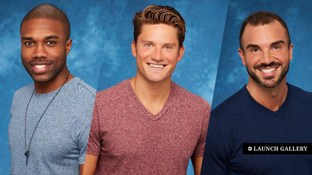 The Bachelorette Season 13 contestants Rachel Lindsay