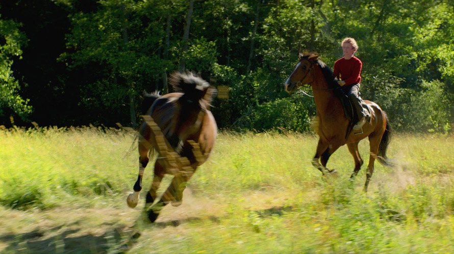 Out-Stealing-Horses