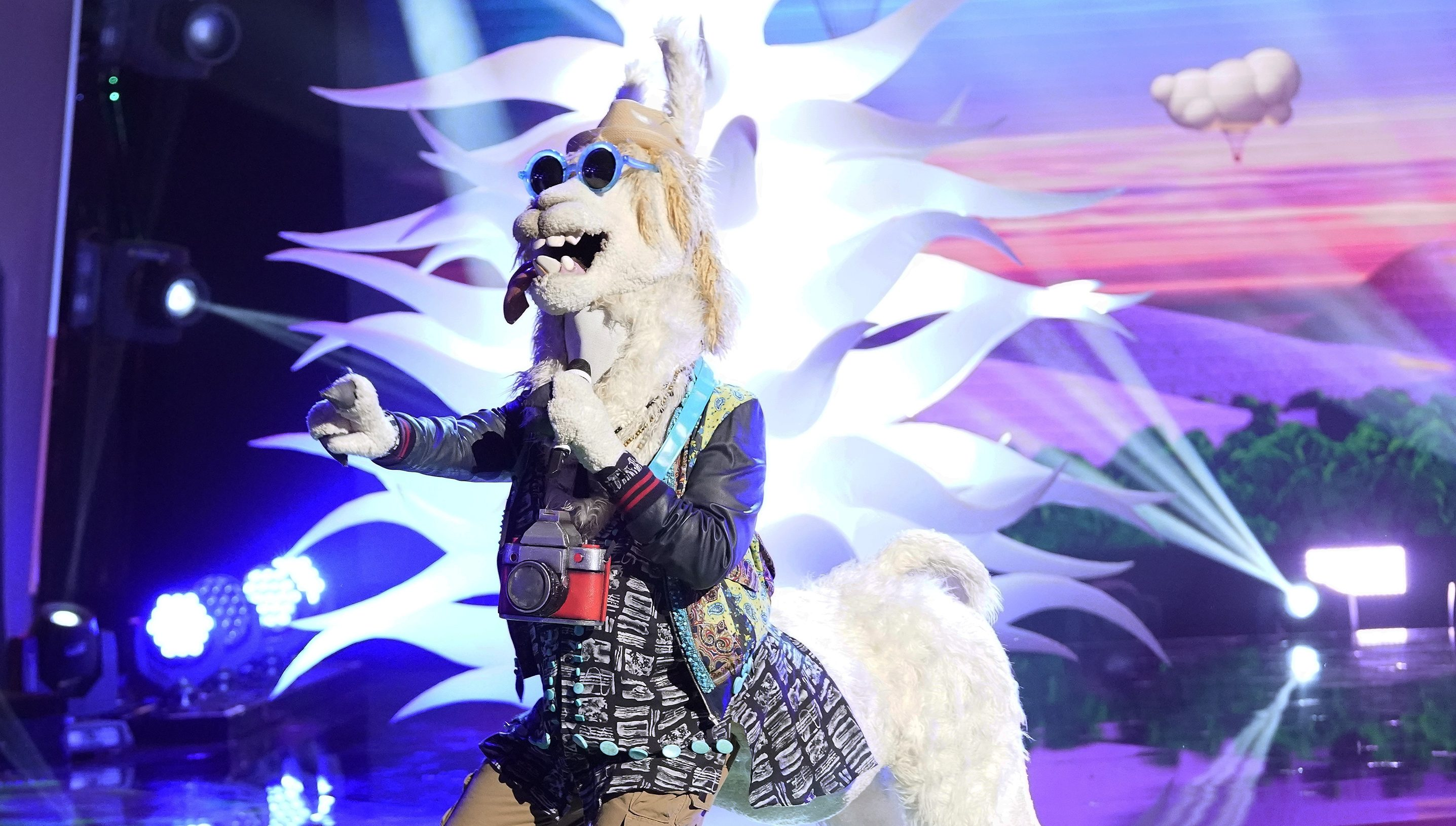 The Masked Singer Reveals The Identity Of The Llama Variety