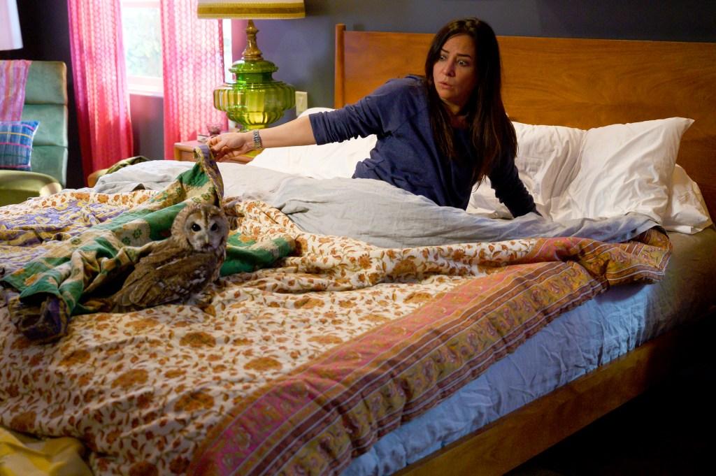 Better Thing Season 5: Release Date, Will Pamela Adlon Play Sam Fox this Time?