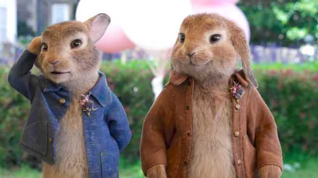 China Box Office: 'Peter Rabbit 2' Scampers to Second Behind Sports Drama 'Never Stop'.jpg