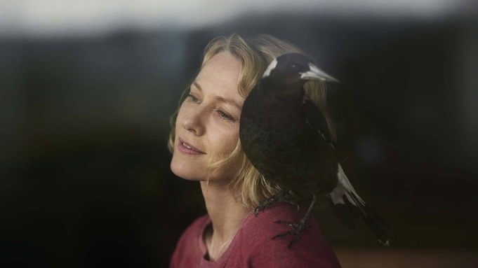 Penguin Bloom' Review: Naomi Watts Elevates an Otherwise Flat Drama - Variety