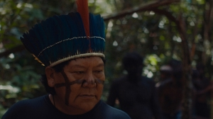 Brazil's 'The Last Forest' Throws Spotlight on Endangered Amazon