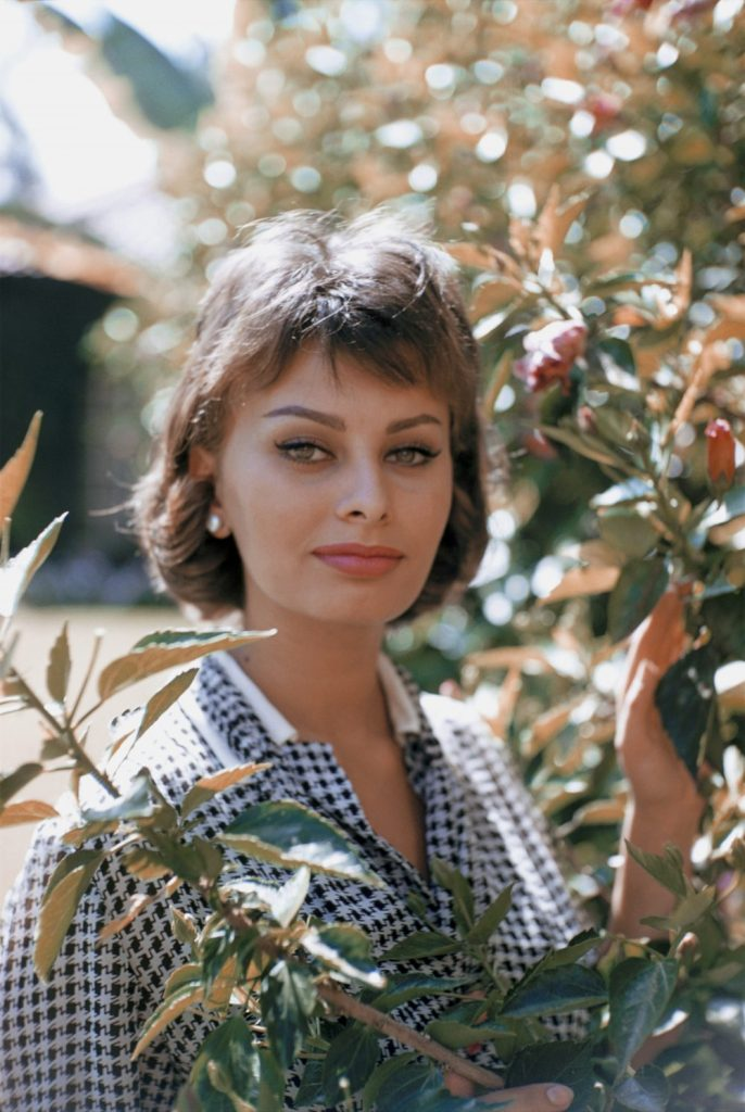 LOS ANGELES - AUGUST 20: Italian actress Sophia Loren poses for a portrait on August 20, 1958 in Los Angeles, California. (Photo by Richard C. Miller/Donaldson Collection/Getty Images)
