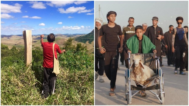 'This Land is Our Land,' 'Ali and His Miracle Sheep' Win Sheffield Doc/Fest Awards.jpg