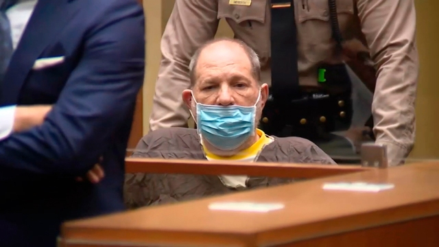 Harvey Weinstein Pleads Not Guilty to Sexual Assaults in Los Angeles Courtroom.jpg