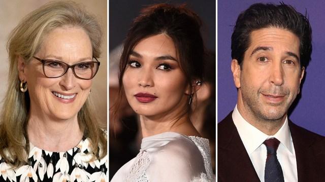 Meryl Streep, Gemma Chan, David Schwimmer Among Nine Cast in 'Extrapolations' at Apple.jpg
