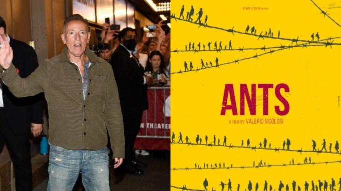 Springsteen/Ants Doc